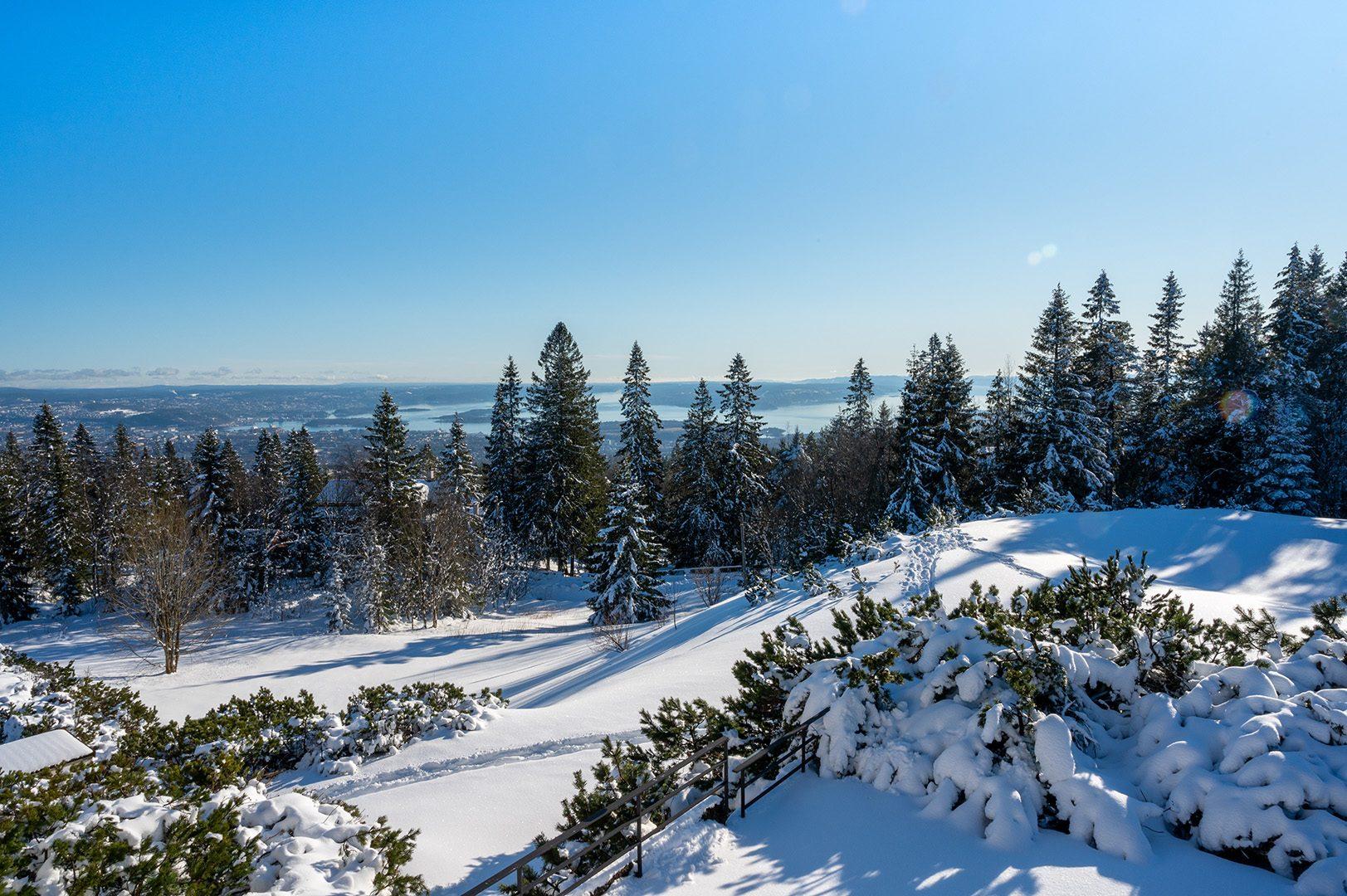 Vinter og natur